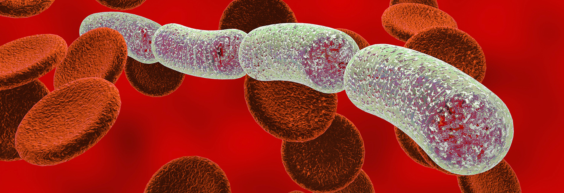Diagnosis of bacillus anthracis infection based on detection of bacterial secreted biomarkers