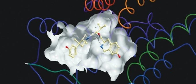 Rational planning of biologically-active small molecules